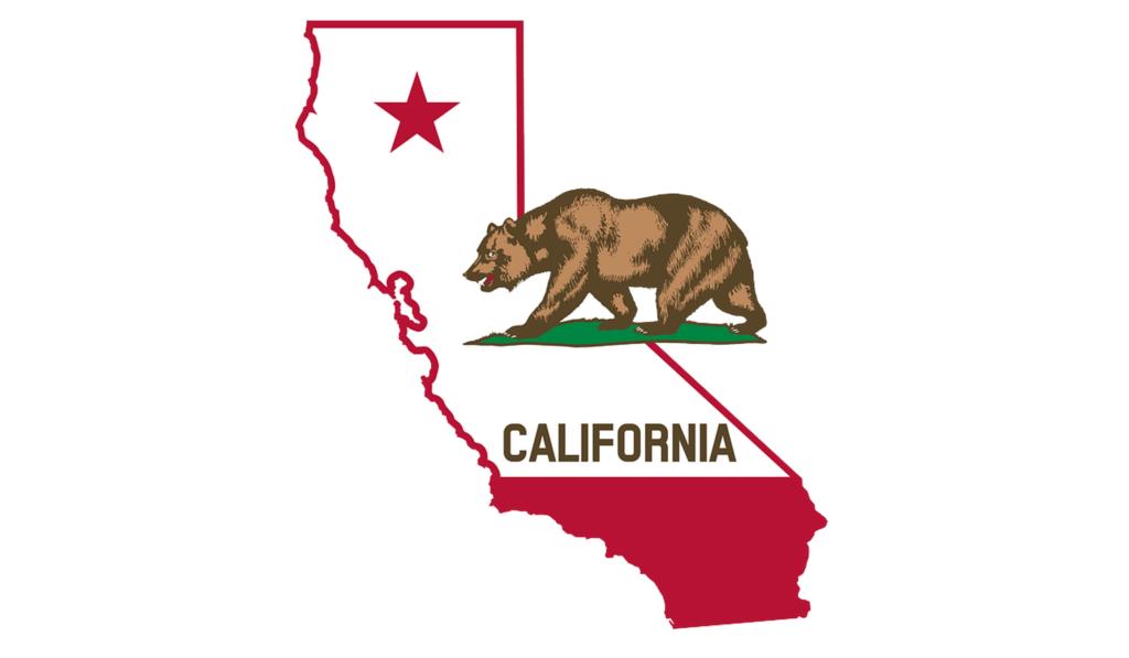 California state outline bear