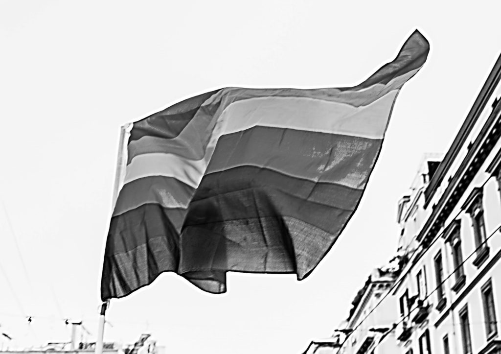 Gay Flag no colors
