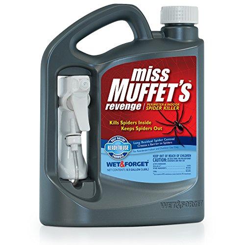 Miss Muffets revenge
