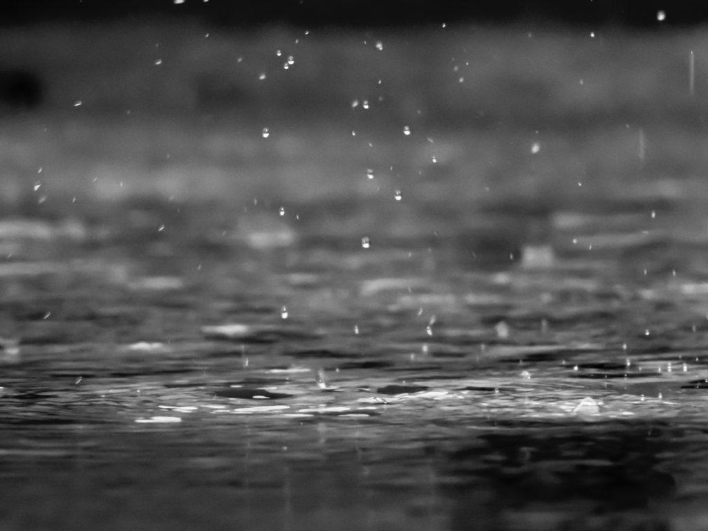 Rain Photo byreza shayestehpouronUnsplash