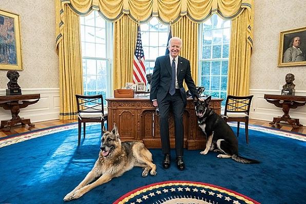 White House 640px-President_Joe_Biden_with_his_dogs