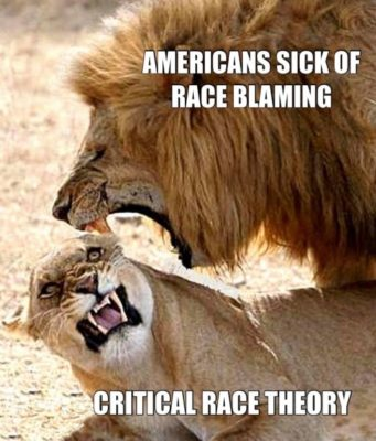 Conservatives telling CRT to BACK OFF - Lion analogy