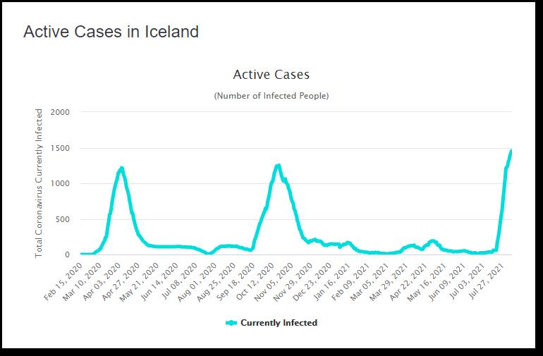 Iceland Cases