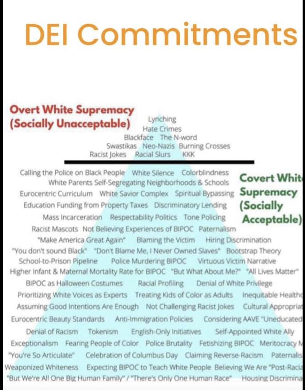 DEI Commitments SAU 16