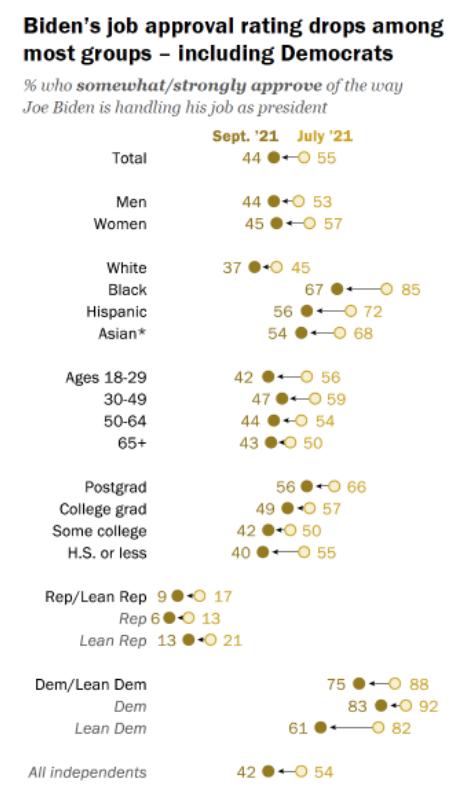 Biden Pew Poll job performace