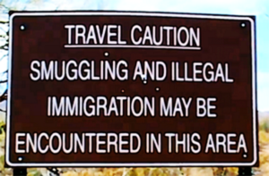 Smuggling and illegal immigration