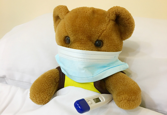 Teddy Bear masked
