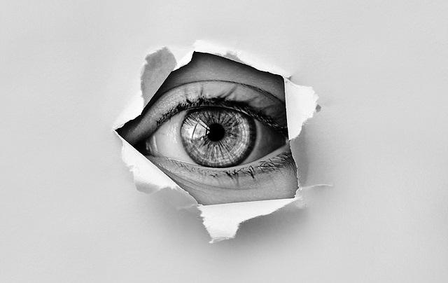 eye spying snoopin original Image on Pixabay from Pixabay x400
